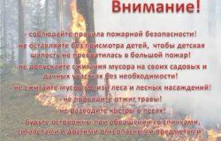 Внимание! Лесные пожары